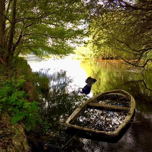 France. Lac de Léon