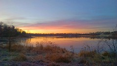 Lake Artemesia 75