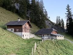 2018.01. Schwandialp Winterälpler
