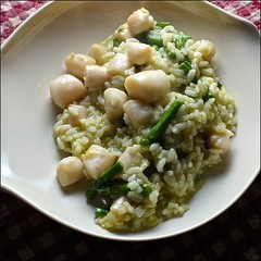 Risotto / Bay Scallops