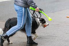 Dame mit Hund an der Leine und der Hund hat ein Ball im Maul