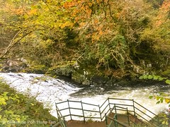 Platform, Swallow Falls, Snowdonia National Park, Betws-y-Coed
