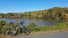 2019 Bike 180: Day 158 - Lake Accotink