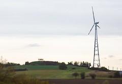Windrad an Feld
