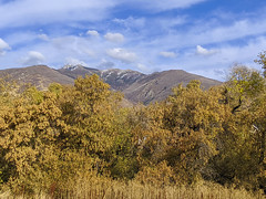 Wasatch Mtns. from Kaysville, Utah