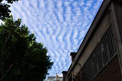 Dem Clouds