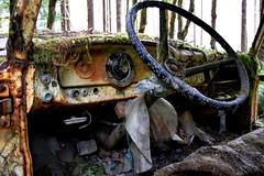 Autowracks Car Wrecks Amerika