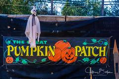 2019 10 Pumpkin Patch