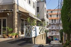 omotesando alley