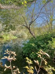 Fishers Green - Lee Valley