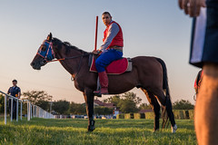 Horse rider with spear at competiotion awaiting his turn to throw