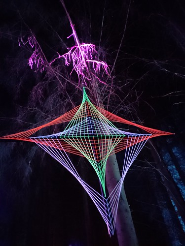 Colorful Rhombus in the Night Forest