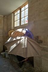 Parisian parasols