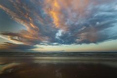 Bakers Beach, Tasmania Australia.