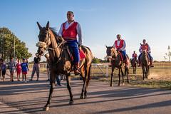 Vitezovi na svojim konjima. 56. Ljubičevske konjičke igre