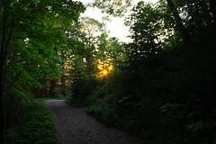 Zur Schnappenkirche Sonnenlicht