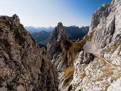 Alpi e Prealpi Carniche 2019