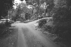 Upalong Road (photo 2)