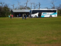 Port Lincoln.  Grants touring coach on Mikkira station. Morning tea stop near koalas, emus and the old station homestead which dates from 1842.