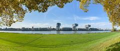 Poller Wiesen im Herbst in Köln, Deutschland