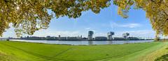 Blick aus den Poller Wiesen auf Rheinauhafen in Köln, Deutschland