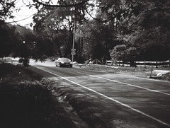 Mount Dandenong Tourist Road (photo 2)