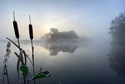 Misty Autumn Morning 1