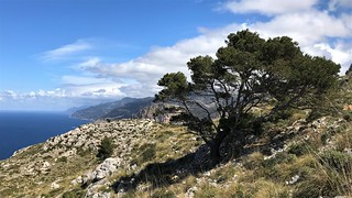 coast of Mallorca