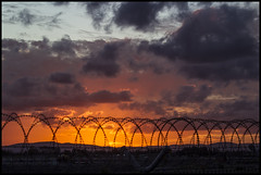 Dusk at Brisbane Airport behind barb wire=