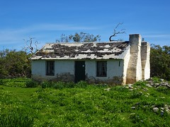 Port Lincoln. Mikkira homestead built in 1842. The former garden still survives with many spring flowering bulbs from around the world including the rare Starfish Lily. .