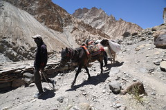 Horseman in Dry Mountains