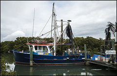 Sandgate Trawler Rolinda with sea food for sale=
