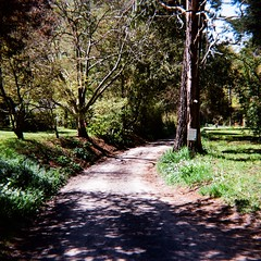 Old Coach Road (photo 3)