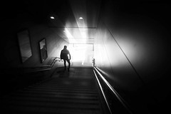 Walking toward the Light