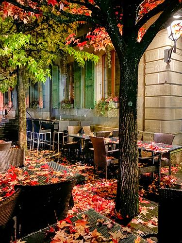 Autumn's rain