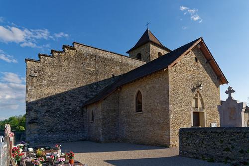 Vestige du château delphinal - Saint Romain de Jalionas - Isère