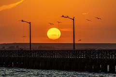 Sunrise over the Pier