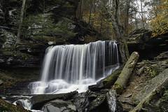 B. Reynolds waterfall