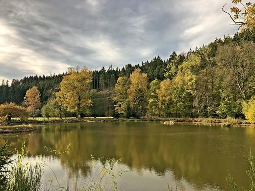 Teichlandschaft Göltzschtal