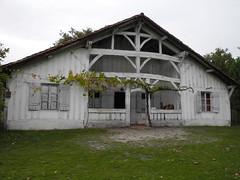 Marquèze (Sabres, Landes, France) 40