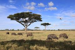 Tansania 2019