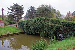 2019-10-17 10-21 Lyon 174 Châtillon-sur-Chalaronne - Photo of Saint-André-le-Bouchoux