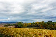 2019-10-17 10-21 Lyon 131 Château de Corcelles