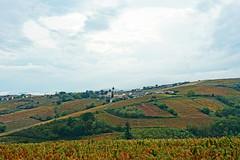 2019-10-17 10-21 Lyon 144 Chiroubles, Le Plateau de Grille-Midi
