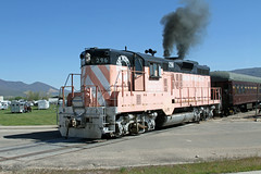 Pinky On The Ground With Horses. The Heber Valley's excursion train for the NRHS national convention went on the ground only a few 100 feet after leaving the station. It was led by former UP and Great Western Railway GP9 #296.