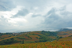 2019-10-17 10-21 Lyon 146 Chiroubles, Le Plateau de Grille-Midi