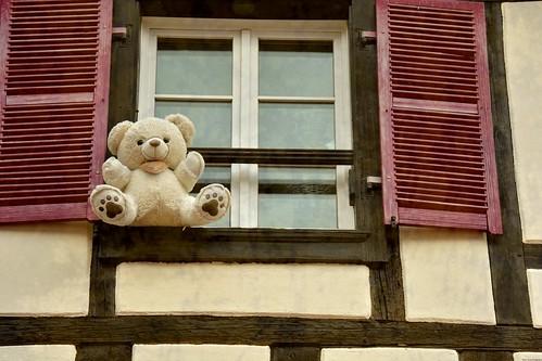 Fenêtre sur le bonheur