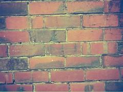 Bricks (photo 2)