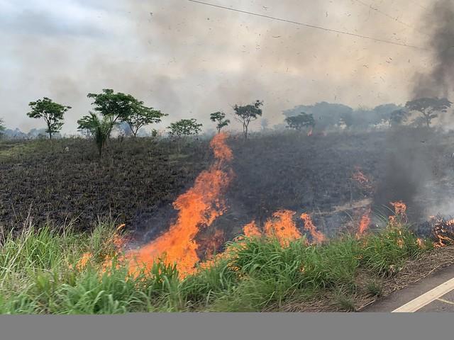 Queimada registrada em 26 de outubro na BR-155, em Eldorado do Carajás, no Pará. Rodovia vai de Marabá até Redenção - Créditos: Catarina Barbosa