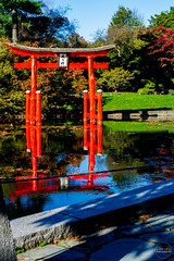 2019-11-02 Fall Visit to Brooklyn Botanical Gardens (Touch Edits) - 013
